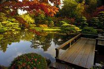 Asian garden Poster & Asian garden Kunstdrucke online kaufen - ARTFLAKES.COM