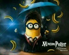 Harry Potter Minion :-)