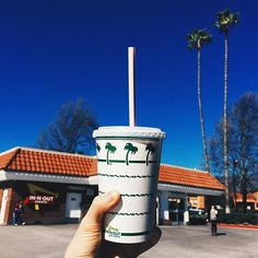 When in California...  #innout #hambuger #fastfood #delicious #frenchfries #burger #food #tasty #palmtrees #california #coolla #milkshake #la #vsco #vscocam #seungjuyoung #travel #sky