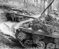 Two American tank destroyers move up in the Hürtgen Forest area, October 1944 M10 Tank Destroyer, Military Photos, Military History, Military Art, M10 Wolverine, Ardennes, Ww2 Tanks, Battle Tank, Military Diorama