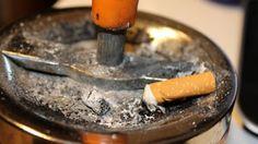 Tutta salute: Non riuscite a smettere di fumare? Fatelo per Fido