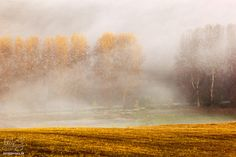 Fotografia - Impresia I / juraj. Magick, Country Roads, Painting, Art, Fotografia, Art Background, Painting Art, Kunst, Witchcraft