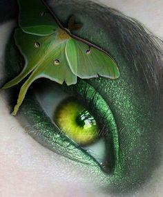 Green butterfly eye