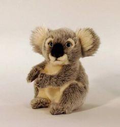 Mom loves koala bears