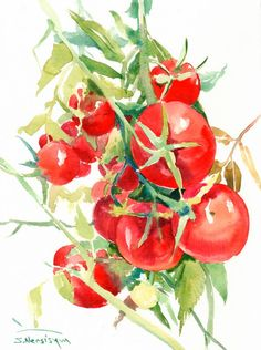 Tomatoes Painting, original watercolor painting, 12 x 9 in, grape tomatoes…