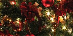 Free Christmas Wallpaper Backgrounds, Christmas Background Images, Christmas Tree Wallpaper, Holiday Wallpaper, Background Ideas, Wallpaper Ideas, Santa Claus Wallpaper, Snowman Wallpaper, Christmas Abbott
