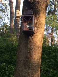 Copper Lantern Bird feeder