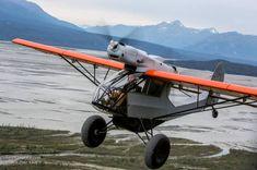 bush planes