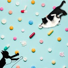 """CAT ME IF YOU CAN on Instagram: """"🐈 can help as a complementary therapy in cases of autism, Alzheimer's or ADHD. Although, scientifically, there is no research to support…"""" Adhd, Autism, Design Art, Therapy, Cases, Canning, Creative, Instagram, Healing"""