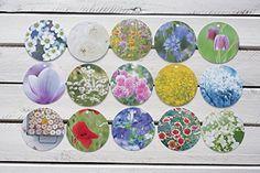 Geschenkanhänger Anhänger Blumen, Blüten, Pflanzen Fotogr... http://www.amazon.de/dp/B01C36YL2Q/ref=cm_sw_r_pi_dp_734gxb1HQT0TN