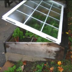 Always getting used windows from remodels  great way to use for starting plants in cool weather.