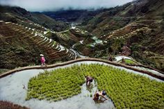 The rice terraces of Banaue Philippines | Blog de Charles Ramos