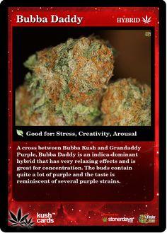 Bubba Daddy | Repined By 5280mosli.com | Organic Cannabis College | Top Shelf Marijuana | High Quality Shatter
