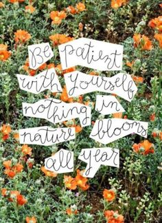 Nothing blooms all year. #mayitbeofbenefit #patience #grace