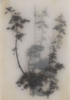 Brooks Shane Salzwedel | Held Up, resins and transparent tape over graphite drawing