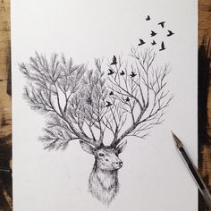 Italian artist Alfred Basha combines animals and natural elements such as trees, branches and leaves to create his beautiful drawings. More illustrations via Ideia Quente drawings Hand Drawn Animal Illustrations by Alfred Basha Ink Drawings, Animal Drawings, Drawing Sketches, Cool Drawings, Animal Illustrations, Drawing Animals, Drawing Drawing, Dog Sketches, Drawing With Pen