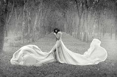 softness, movement, symmetry, fantasy.  love.  image by aditya pudjo