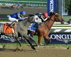 Two of my favorite race horses Texas Red wins the Jim Dandy Stakes Frosted coming in second