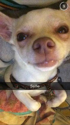 Hims selfie