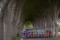 Gallery: 2014 Tour de France, stage 15 - VeloNews.com