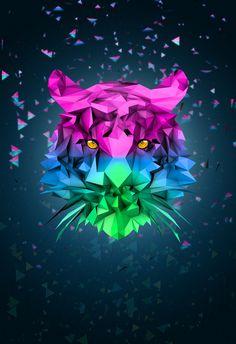 Tiger Poster Design by Trinh Le, via Behance