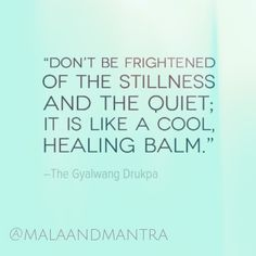 """""""Don't be frightened of the stillness and the quiet; it is like a cool, healing balm."""" -The Gyalwang Drukpa"""