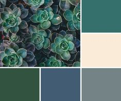 Image Result For What Color Goes Well With Hunter Green
