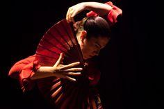 Guajiras Flamenco