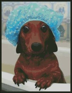 A Dachshund's Bath Time - Counted Needle Point and Cross Stitch Chart Pattern… Needlepoint Patterns, Weiner Dogs, Bath Time, Dachshund, Gift Guide, Goodies, Cross Stitch, Chart, Easy