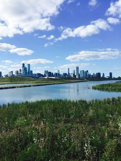 Chicago from Northerly Isle by Chuck Gullett of Best Chicago Properties. Want to live here? Click the photo and browse Chicago real estate. Moving To Chicago, Chicago Map, Chicago Neighborhoods, Chicago Photography, The Neighbourhood, Real Estate, River, Outdoor, Outdoors