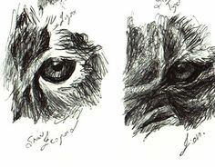 """Check out new work on my @Behance portfolio: """"Sketch time - 10 animal eyes""""…"""