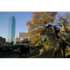 Statues in a park Cattle Drive Sculpture Pioneer Plaza Dallas Texas USA Canvas Art - Panoramic Images (27 x 9)