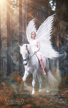 Image may contain: one or more people, horse, outdoor and text Horse Girl Photography, Fantasy Photography, Angel Pictures, Horse Pictures, Fantasy Creatures, Mythical Creatures, Horse Costumes, Most Beautiful Horses, Unicorn Art