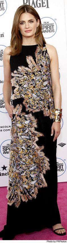 Stana Katic wearing Chloe Dress and Jennifer Fisher Jewelry - 2015 Film Independent Spirit Awards