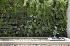 JArdim vertical: Jardins Moderno por Amanda Miranda Arquitetura