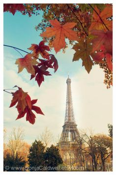 "Autumn in Paris - Eiffel Tower - Fall colors, red orange maple leaves, Paris Photography, 8"" x 12"" Original Signed Fine Art Photograph. $25.00, via Etsy."