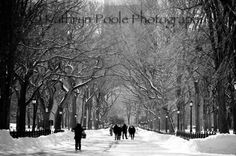 Items similar to Poets Alley, NYC on Etsy Central Park, Peace And Love, Happiness, Nyc, Spaces, Photography, Outdoor, Fotografie, Photograph