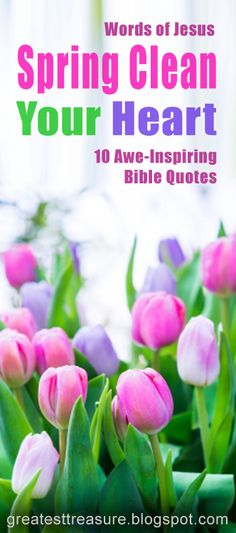 Words of Jesus - Spring Clean Your Heart -10 Awe-Inspiring Bible Quotes
