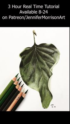 Pencil Drawings Of Flowers, Colored Pencil Artwork, Pencil Drawing Tutorials, Pencil Art Drawings, Realistic Drawings, Colorful Drawings, Colored Pencils, Draw Flowers, Rose Drawings