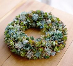 Succulents are hard and drought tolerant, making them ideal for a holiday wreath that will stay green throughout the season without a lot of maintenance.