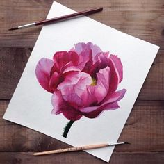 "Daily Paintworks - ""Pink peony"" - Original Fine Art for Sale - © Anna Sakhanchuk Watercolor Pencil Art, Watercolor Pencils Techniques, Watercolor Flowers, Watercolor Paintings, Peony Painting, Art Basics, Floral Illustrations, Faux Flowers, Pink Peonies"