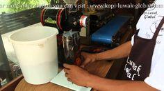 kopi-luwak-global