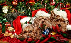 """New for 2012! Yorkshire Terrier Christmas Holiday Cards are 8 1/2"""" x 5 1/2"""" and come in packages of 12 cards. One design per package. All designs include envelopes, your personal message, and choice of greeting. Select the inside greeting of your choice from the menu below.Add your custom personal message to the Comments box during checkout."""