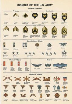 6 Best Images of Military Officer Rank Chart Printable - Army Officer Rank Insignia Chart, Army Military Rank Chart and Military Ranks and Insignia