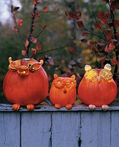 Pumpkin Carving Ideas and Patterns for Halloween 2014 How about creating an owl observer, rather, observers. This will totally rock your porch! You can have instant outdoor Halloween decorations and at the same time pumpkin carving that will light up the dark night outside.