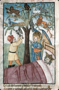"""""""Trees moeveth nought wilfulliche, nouther fro place to place as beestes doth"""" #trevisaquotes"""