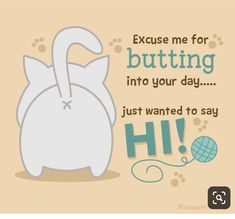 Send this cute cat butt card for FREE to a friend or loved one just to say Hi! Good Morning Quotes For Him, Good Day Quotes, Good Morning Funny, Good Morning Wishes, Hello Quotes, Hi Quotes, Cute Quotes, Funny Quotes, It's Funny