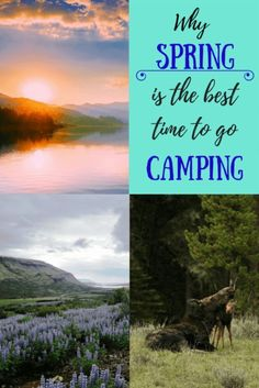 Avoiding the throngs of people that camp from Memorial Day to Labor Day is just one reason why spring camping is perfectly awesome. Here a few more to entice you to get out there. Camping Games, Camping Activities, Tent Camping, Camping Gear, Outdoor Camping, Backpacking Tips, Camping Stuff, Hiking Trips, Camping Guide