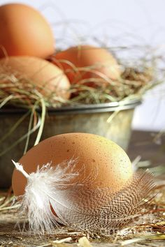 Closeup of brown eggs with straw by Sandra Cunningham