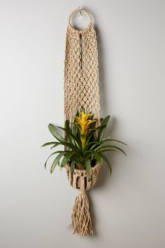 Macrame Plant Hanger - anthropologie.com
